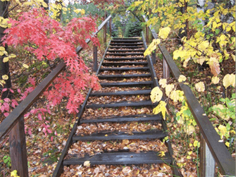 Staircase at McGivern Park Campground